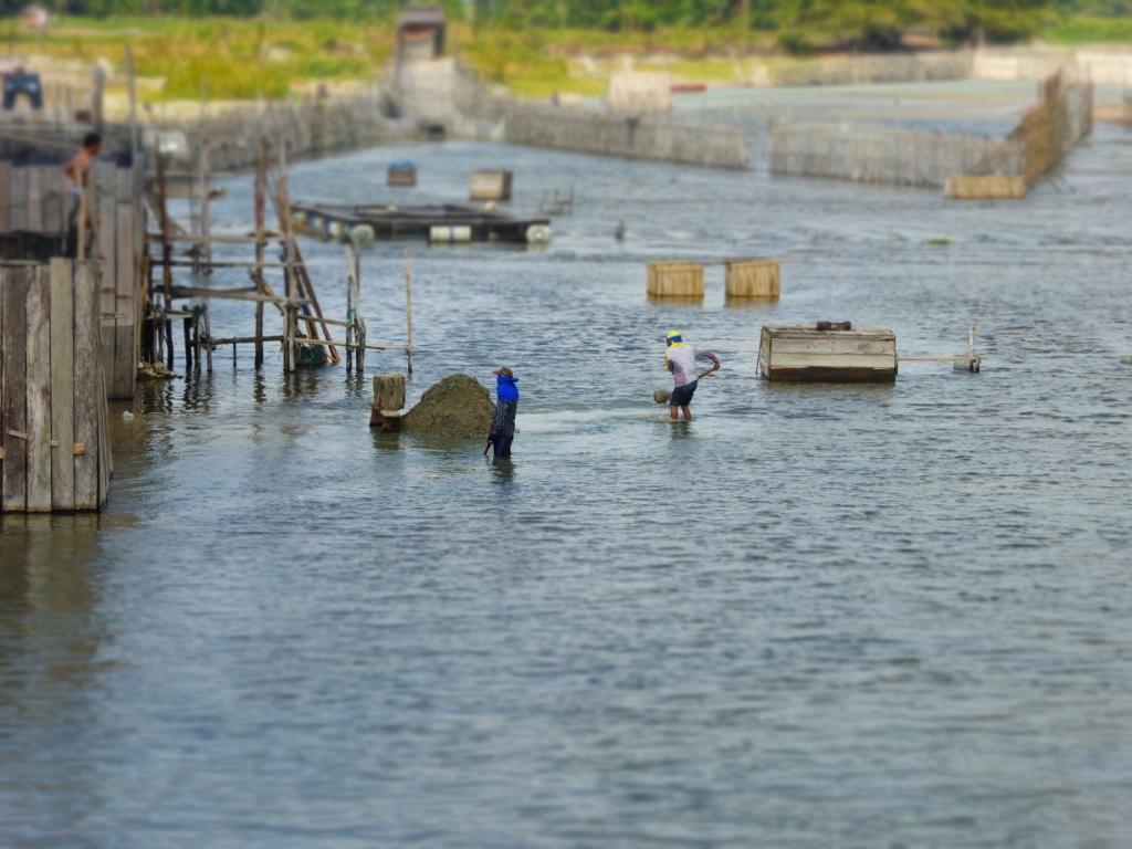 Poso-See vom Stadtzentrum Tentenas aus gesehen