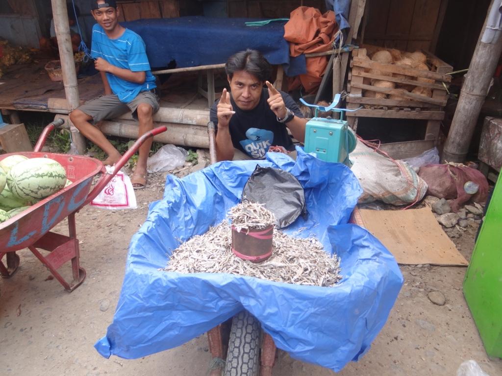 Tanja Toraja: Wasserbüffelmarkt