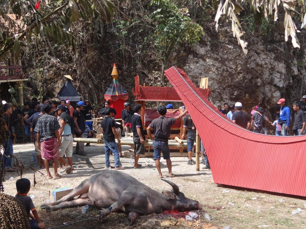 Toraja - Bestattungszeremonie